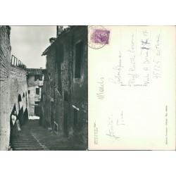 Cartolina Urbino