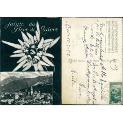 Cartolina Pieve di Cadore
